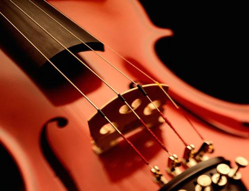 Art et précieux : Albingia et luthiers sont au diapason