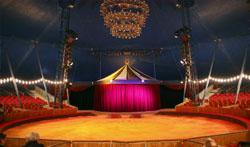 Albingia : Pour le cirque elle assure la représentation même à haut risque